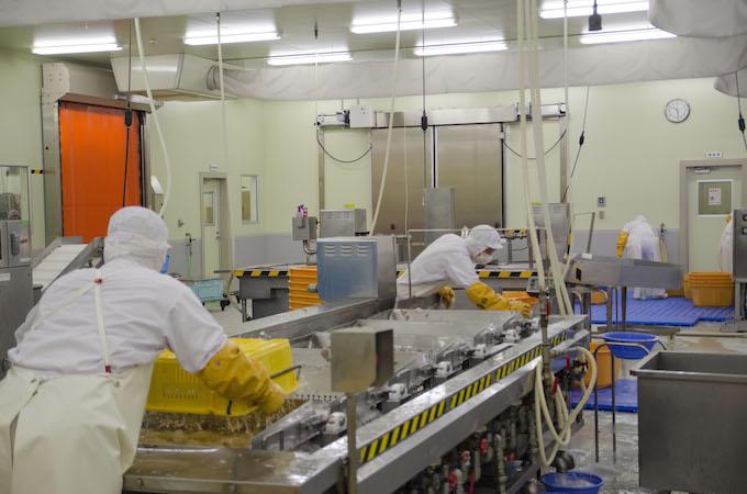 熟練のスタッフによる試行錯誤の連続で、商品化 ※工場内の様子は本商品とは関係ありません。